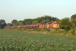 BNSF 5230, 651, 4447, Eastbound on the Bayard Sub